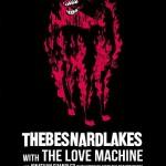 Besnard Lakes - promo poster