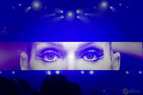 Celine Dion at Canadian Tire Centre (2019) by Matthew Perry
